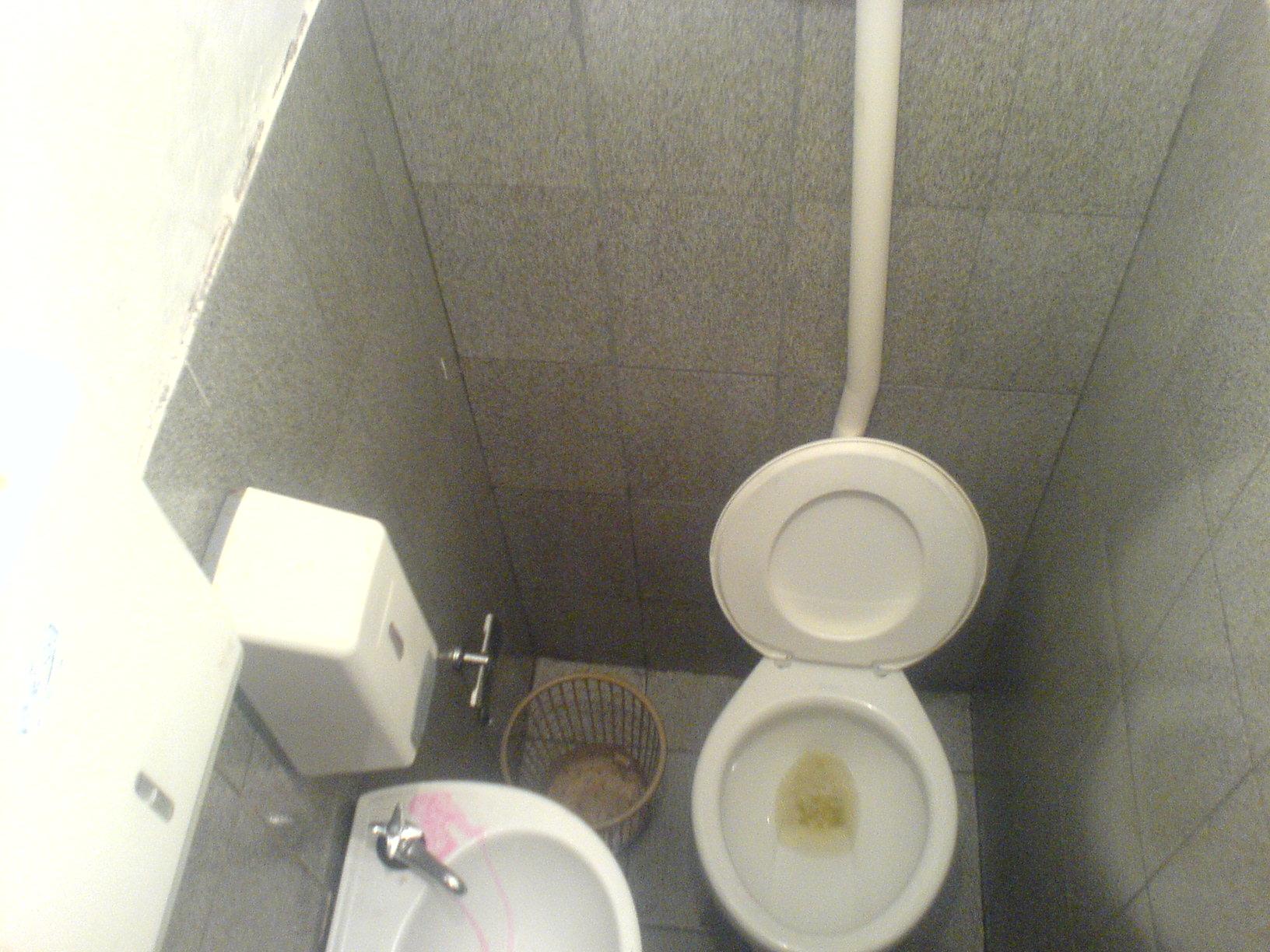 Caninhas Botequeiros Página 2 #837E48 1632x1224 Banheiro De Pobre Bonito